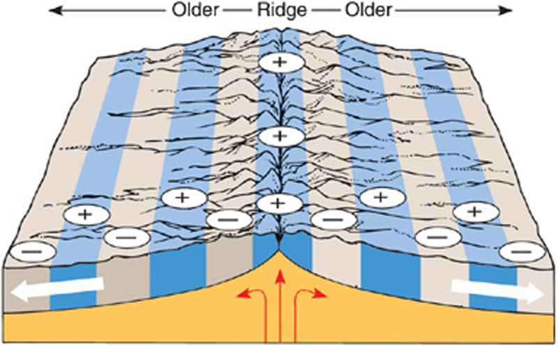 Isochron map of midocean ridge: shows magnetic bands, indicates ...