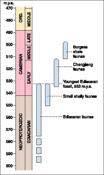 the geologic time scale. Geologic time scale across the